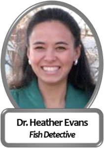 Dr. Heather Evans, Research Associate