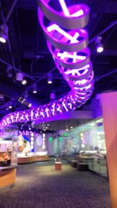 DNA Artwork on Ceiling