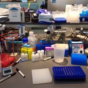 photo of lab bench